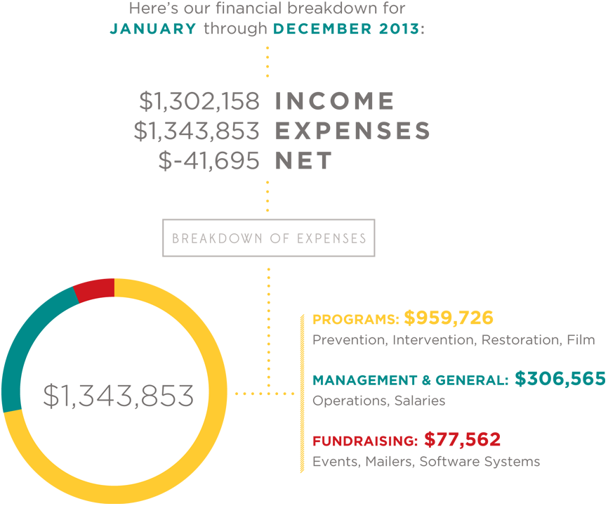 2013 Income & Expenses